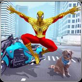 Super Spider Hero Crime City: Spider Boy Adventure