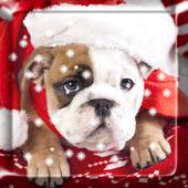 Christmas Dog Live Wallpaper 1.0.1