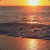 Sunset Beach Live Wallpaper HD 2.0