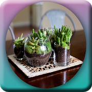 Awesome DIY Terrarium Design 1.0