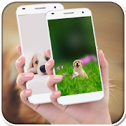 Funny Dog Wallpapers 1.0