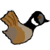Flappy GooseWenchao WangAdventure