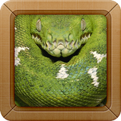 Anaconda Snake Wallpapers 3.6.9
