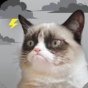 Grumpy Cat Weather 5.2.0