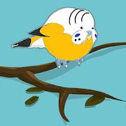 Fly Budgie - Uçan Muhabbet Kuşu 4.4