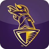 Kolkata Knight Riders IPL 2015 1.0.18