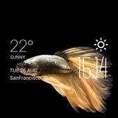 Fish weather widget/clock 2.0_release