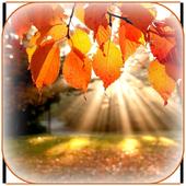 Autumn Wallpaper 1.0