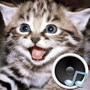Animal sounds 3.0