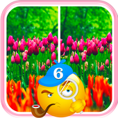 Find Differences Flower Games 1.3.0
