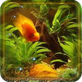 Aquarium Gallery 1.4