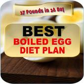 BEST BOILED EGGS DIET PLAN 9.9
