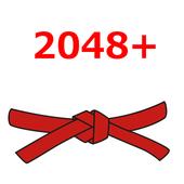 2048 Plus Pro