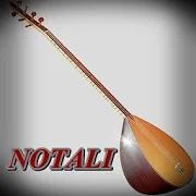 Virtual Baglama With Notes 1.06