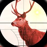 Deer Expert Shooter 1.1