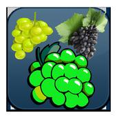 Grape Twist 4.0