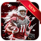 Larry Fitzgerald Wallpapers - Zayan