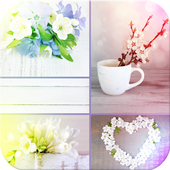 Photo Grid - Collage Maker 1.0.1