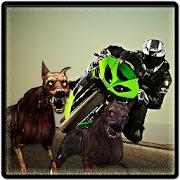 Zombie Highway : Bike Driver 1.4