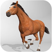 Horse Simulator 3D 1.0.3