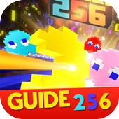 Guide for Pac Man 256 1.0