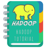 Tutorial for Haadops 1.0