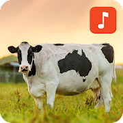 cow_sounds.manitdev.info 1.0.1