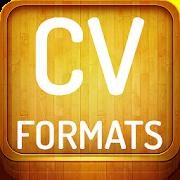 CV Formats 2019 3.0