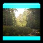 Ze světa lesních samot Kniha 1.0.0