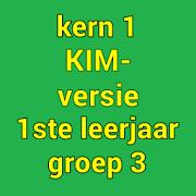 Kern1KIM 4.1