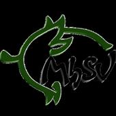 MhSV Multigaming