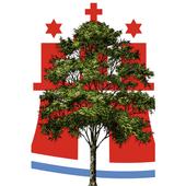 Baumkataster Hamburger Straßenbäume 1.0.13