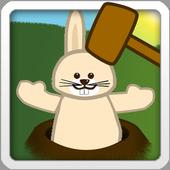 Bunny Hammer 5