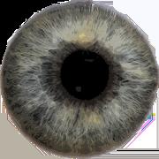 Eye Diagnosis