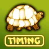 Gem Timing 1.15