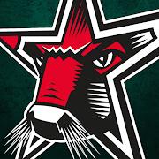 Starbulls Rosenheim 2.0.4