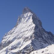 Swiss System Tournament 1.6