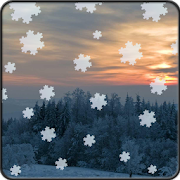 Winter and Snow Live Wallpaper 1.0