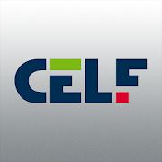 CELF 3.3.4