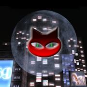 SUPER 25LINES CITY OF CATS 2