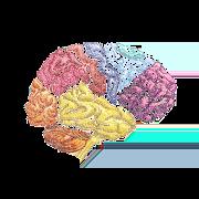 NeuroRes 1.0