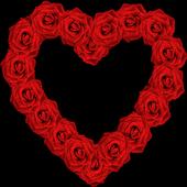 Rosas para Enamorar 1.0