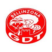 GDT Bellinzona 1.0