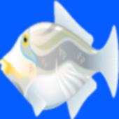 Fish Racing Games Toddlers 1.0