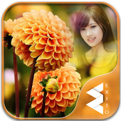 Orange Dahlia Photo Frames 1.7