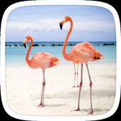 Flamingo Theme