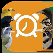 Canto dos Pássaros (Despertador) 1.2.4
