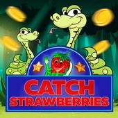 Catch the Strawberry 8