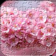 เกมจิ๊กซอว์ ดอกไม้ปริศนา 1.2