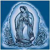 Fondos de Virgen de Guadalupe 1.0